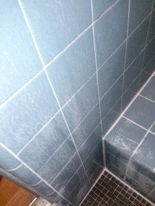 浴室壁石けんカス